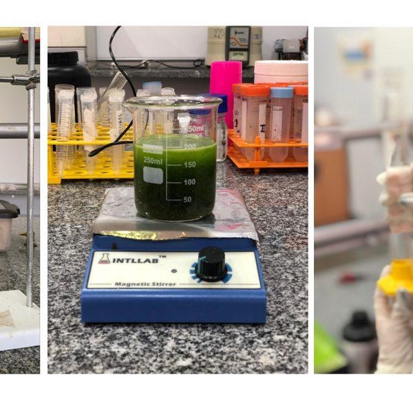 Etapas-para-obtencao-do-extrato-e-sintese-das-nanoparticulas-2